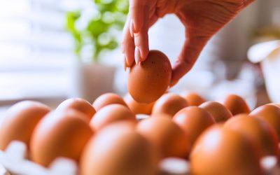 Bár egy picivel drágábban, de lesz elég tojás Húsvétra