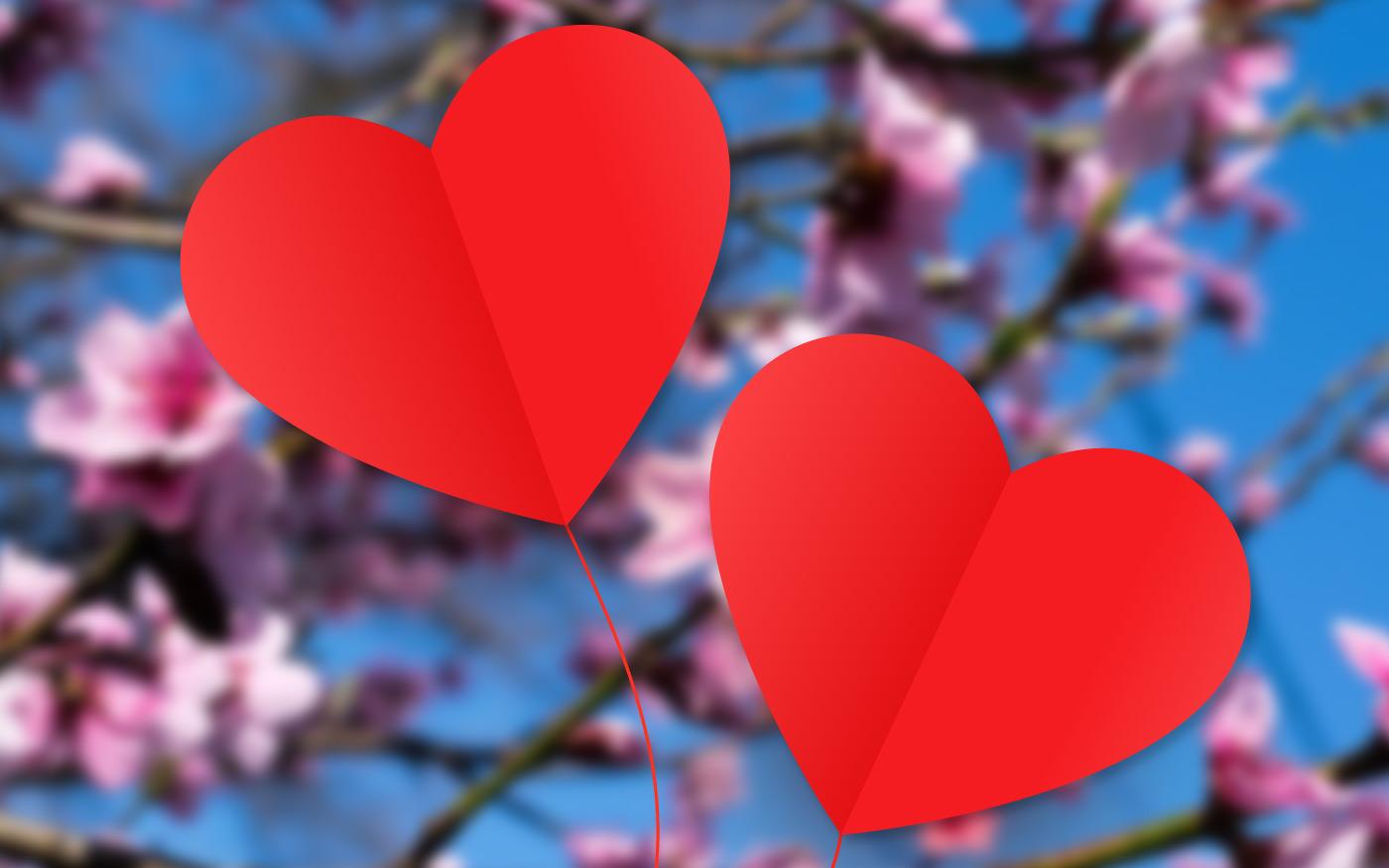 Szívek az ablakokban, köszönő videó a Nádor Egyesülettől