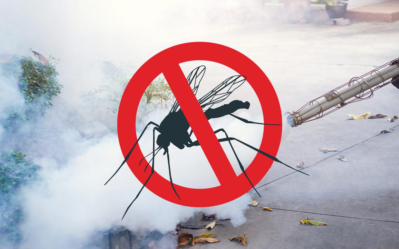 Ma szúnyoggyérítés! 2020.06.30.