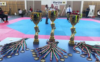 Dunaharasztin rendezik meg az idei WT Taekwondo Országos Bajnokságot