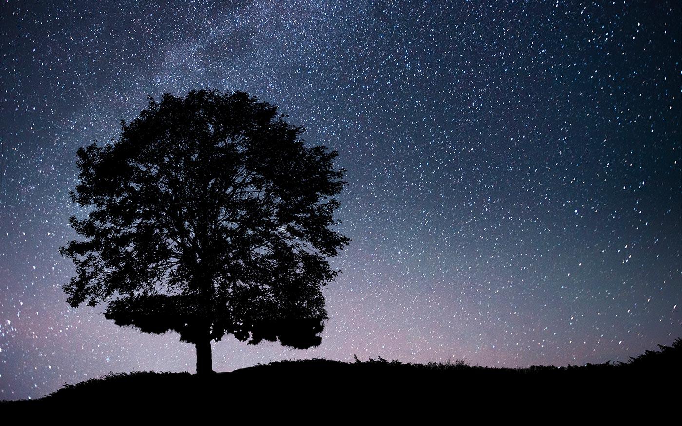 Este csillaghullás! október 8.