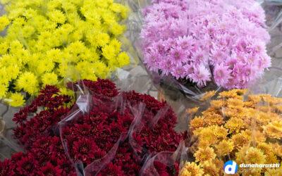 Barátságtalan idő, nagy választék várta a piacra látogatókat