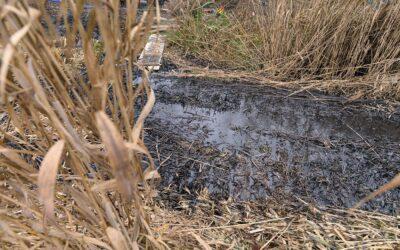 Kiderült: motorolaj és gázolaj került a vízbe Szigetszentmiklóson