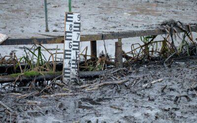 Van gyanúsítottja a szigetszentmiklósi olajszennyezésnek