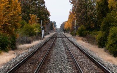 A vasútfejlesztést irányító vegyesvállalat vezetőjével egyeztetett Dunaharaszti polgármestere