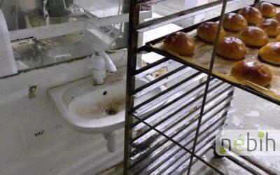 Elképesztő körülmények: felfüggesztették egy dunaharaszti pékség működését
