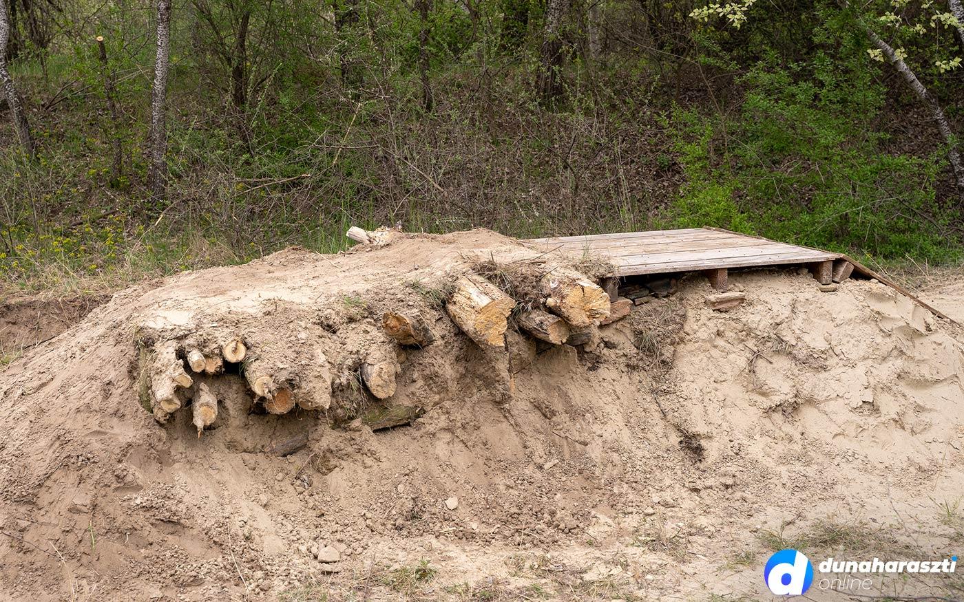 Motorosok pusztítják a haraszti erdőt