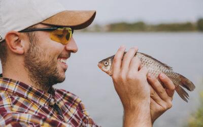 Még több halat telepítenek a Kisdunába